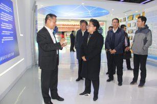 自治区副主席艾丽华一行莅临显鸿科技调研指导
